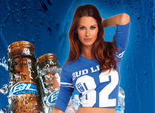 Bud Light Hotel 2012 – Print Campaign